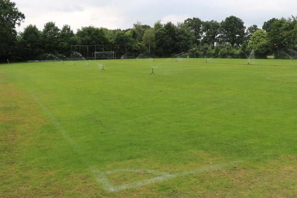 DAR Rietmolen - Voetbal veld 2